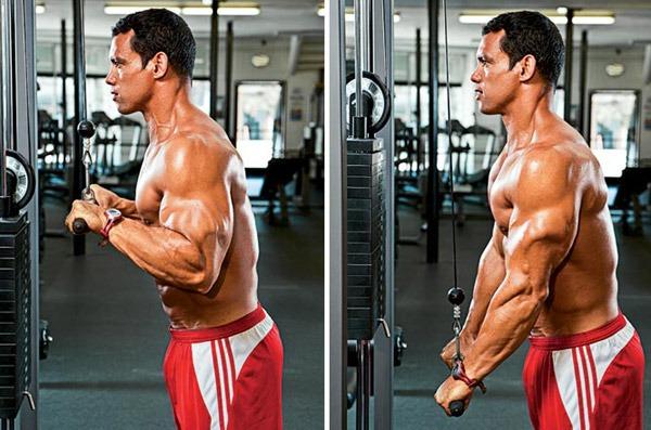 tricep-pushdown-bodybuiling