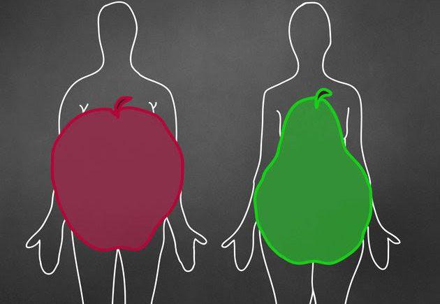 fat distribution